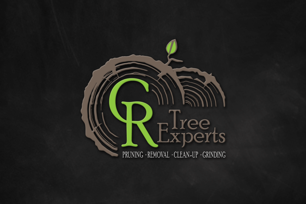 EwingWorks Logo Design-CR TREES